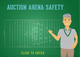 auction-safety-1